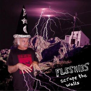 FLESHIES - SCRAPE THE WALLS