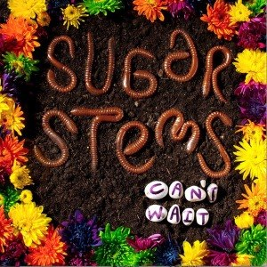 SUGAR STEMS, THE - CAN'T WAIT