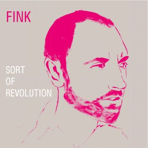 FINK - SORT OF REVOLUTION