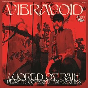 VIBRAVOID - WORLD OF PAIN
